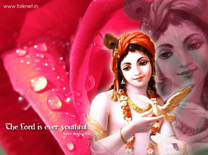 Krishna8.1