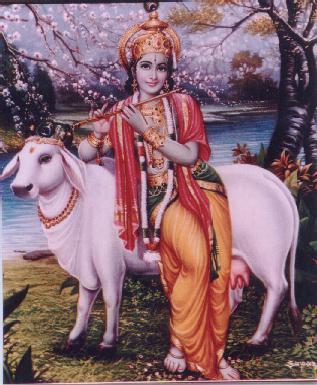 Krishna11