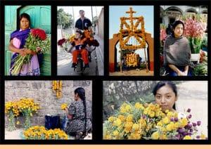 collage bloemn - altaar dia de los muertos