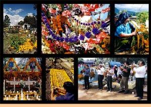 collage bloemen dia de los muertos
